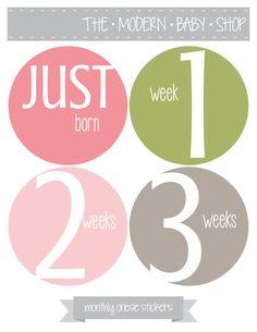 Modern Baby Monthly Onesie Stickers - Baby Shower Gift