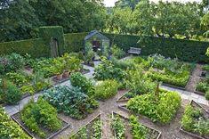 кухонные (овощные) сады