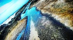 @michelleclavigne #pepe #walk #beach #ocean #surfing #surf #tree #dead #sand #chillin #chill #amazing #pretty #love #workout #photographer #lorne #melbourne #Australia #enjoy #oldschool #tattoos #crossfit by jthlovelife http://ift.tt/1IIGiLS