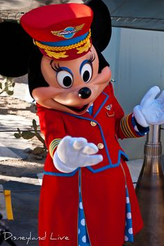 It has been a few weeks since the debut of 'Minnie's Fly Girls Charter Airlines', and Minnie's meet and greet outfit has now been replaced to fit the show's theme.  Minnie still sports the 'Aviator' look for the show, as she is portrayed as just having flown in, but during her meet and greets between shows she can now be seen dressed in her uniform.    Update:  Some readers have reported that Minnie's outfit has now changed for the show as well.