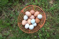 Eggs from Aunt MaryLisa's chickens