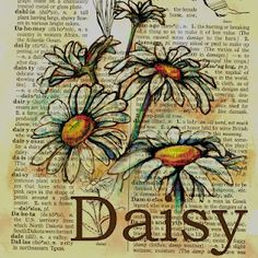 Daisy Mixed Media Drawing on Distressed, Dictionary Page available at flying shoes art studio