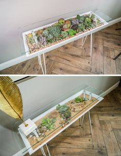 Decor Ideas - The BloomingTable has been designed with a built-in planter to allow users to easily grow plants in their home while also maximizing their space. It laos has a glass table top to showcase small decorative items and the plants below. Plant Table, Decoration Plante, Indoor Planters, Indoor Herbs, Cacti And Succulents, Cacti Garden, Succulent Planters, Modern Table, Back Gardens