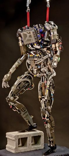 PETMAN  http://www.kurzweilai.net/darpa-to-announce-new-grand-challenge-for-humanoid-robot