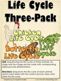 Life Cycles Activity (CHICKEN, FROG, BUTTERFLY)  Free from TpT - sequencing the life cycles of three animals (chicken, frog, butterfly)