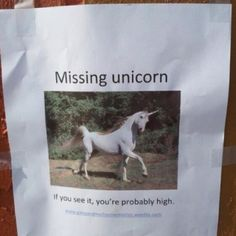 Hilarious Lost Pet Signs Funny Pinterest Hilarious And - 20 hilarious lost pet signs