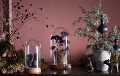 The top of a display cabinet is decorated with greenery, flowers and glass domes.