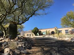 #100happydays #day73  My other neighbor's cool driveway.  It's been a beautiful day.  After a clear and dry weekend all the palo verde trees start to bloom as if they talk to each the night before to start together.  #neghborshouse #driveway #shadows #trees #cactus #cacti #agave #sunlight #arizonahome #arizonahouse #desert #landscape #sky #soblue #soAZ #oh_arizona #iheart #myGod #mylove #mylife #desertlife #delightful #plant #igerstucson #iphonephotography #iphonephotooftheday by cqlifestyle…