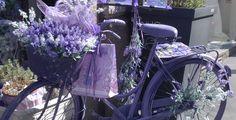 Purple bike in Via Torino, Milan