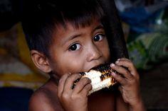 Little boy eating roasted corn.