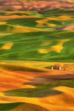 This could very well be my friend, Stacy's homestead. She grew up right at the base of Steptoe Butte amidst the rolling wheat fields of The Palouse, Whitman County WA. There is no place like home.
