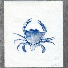 Crabby Cyanotype No. 209 from Handmade On Peconic Bay.  Digital photo printed on acetate.  See Cyanotype Store