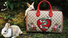 Gucci flora and fauna comes to life in garden of gift ideas