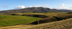 Napier fields, Western Cape | South Africa #SouthAfrica South Africa, Fields, Westerns, Cape, Mountains, Nature, Travel, Mantle, Cabo