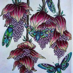 Dagdrommar with prismacolors.#dagdrommarhannakarlzon #dagdrommar#flower#prismacolors #adultcolouring