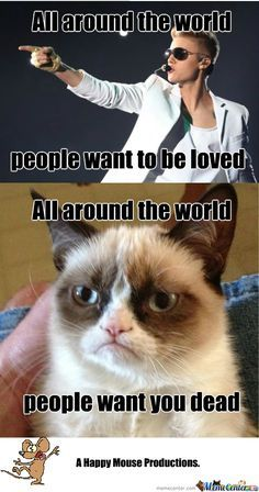 grumpy cat pictures that make fun of justen beiber | Grumpy Cat Hates Justin Too - Meme Center