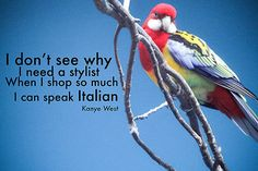 Speak Italian - kanye west rap thug art photography funny meme fine art print og lyrics hip hop gangsta art absurd