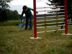 FIN: Kanihyppyä SWE: Kaninhoppning ENG: Rabbit Jumping - YouTube