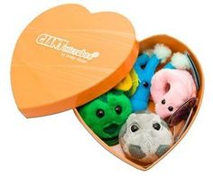 Black Friday Deal Giantmicrobes Heart Burned Gift Box from Giant Microbes Cyber Monday