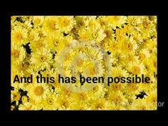 "Feeling Well Tv - ""Pleiadian Message #8"" - YouTube"