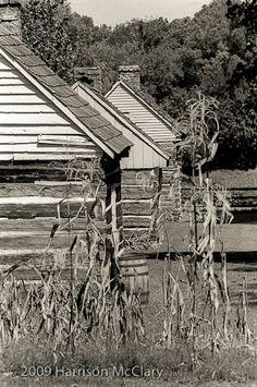 Slave Cabins at the Sam Davis Home