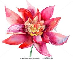 Beautiful colorful flower, Watercolor painting