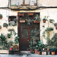 "This plant-laden dream doorway in Barcelona has us daydreaming of the warm weather to come. Did you know that (nearly) all of your indoor plants love to get placed outside during the summer? A few important things to note: first you'll need to protect them from direct sun as ""indirect"" light is much stronger outside than it is in your home. Porches work great! Even cacti and succulents will need to be acclimated gradually if they'll receive direct sun. Second you'll need to water more…"