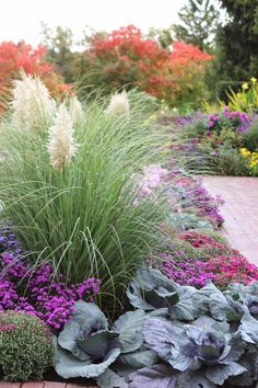 Romancing the Home: Fall Color at the Chicago Botanic Gardens