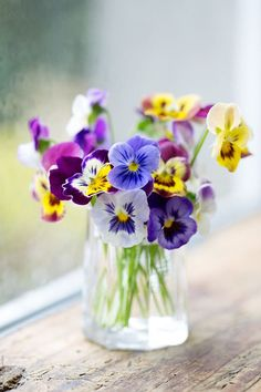 Vase of pansies on a window sill by Ruth Black for Stocksy United
