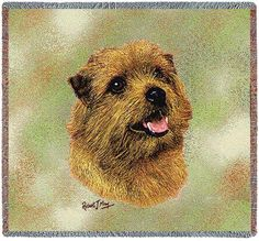 Norfolk Terrier Dog Portrait Throw