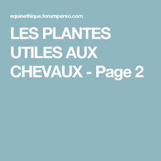 LES PLANTES UTILES AUX CHEVAUX - Page 2