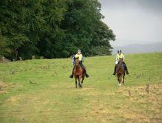 Cumbria endurance group