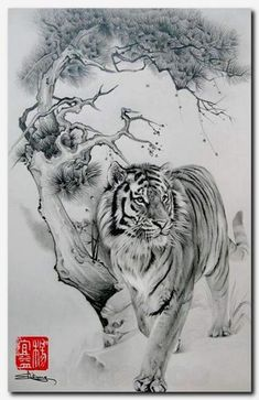 Inspiration for Tiger Tattoo to mark trip to South Korea (idea inspired by mink blanket I was given in Korea) Mehr Trendy Tattoos, Tattoos For Guys, Cool Tattoos, Mens Tattoos, Sleeve Tattoos, Beautiful Tattoos, Tattoo Drawings, Body Art Tattoos, Tree Drawings