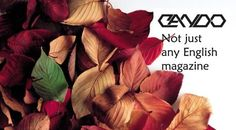 About Can Do Magazine