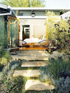 drought tolerant elegant lush backyards