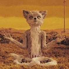 Kristofferson - what a cool fox
