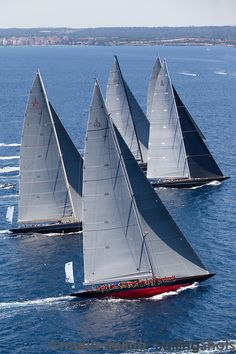 Friday June Superyacht Cup in Palma de Mallorca Sail Racing, Sailboat Racing, J Class Yacht, Classic Sailing, Boat Insurance, Yacht Boat, Sail Away, Power Boats, Tall Ships