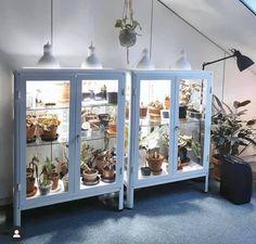 Indoor Greenhouse, Indoor Garden, Indoor Plants, Home And Garden, Garden Beds, Inside Plants, Room With Plants, Ikea Glass Cabinet, Plant Decor