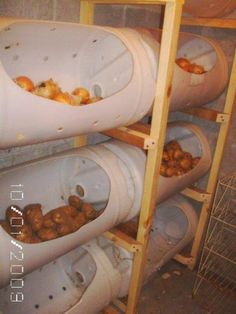 Easy Homestead: Bucket Storage for Vegetable.....wish I had a place like this to…