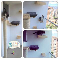 Gimnasio en balcón Crazy Cat Lady, Crazy Cats, Bookcase, Shelves, Business, Animals, Home Decor, Ideas, Cat Scratching Post