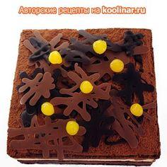 Торт Форе Нуар.