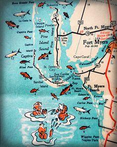 Map Of Punta Gorda Florida.Maps Of Punta Gorda Www Everythingpuntagorda Com Take Me There