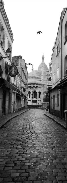 Montmartre, Paris, France  I've read so many books where this street is mentioned, I want to go there, and how elegant are real cobblestone streets!