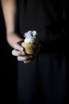 Food photography & styling - muffins