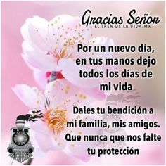 Acercate a Dios – Imágenes para toda ocasión Good Morning Good Night, Good Morning Wishes, Good Morning Quotes, 50th Birthday Wishes, Beautiful Flowers Pictures, Women Of Faith, Spanish Quotes, Dear God, God Is Good
