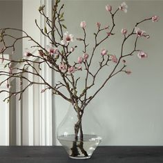 Tulip Magnolia Branches in House+Home HOME DÉCOR Room Accents Plants+Florals at Terrain
