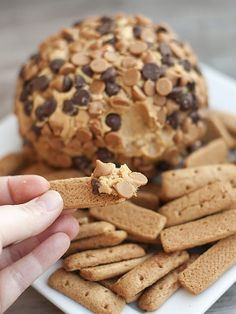Peanut Butter Cheese Ball Recipe by Buns in My Oven | Maypurr