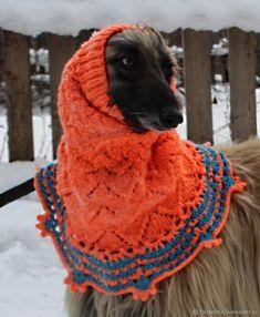 Эксклюзивные шапочки для афганской борзой, доставят радость вашему животному. Длинная шея позволяет держать голову гордо , поэтому шапочка хорошо держится на голове, ушки закрыты, Модно! Стильно!