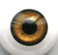 16mm acrylic doll eye #eye #doll #acrylic #hazel $8.00