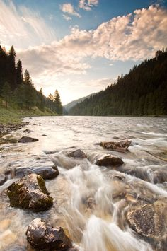 Clearwater River Idaho- 'back where I come from'